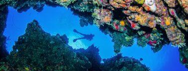 cayman brac diver above between reef 1060x403 min