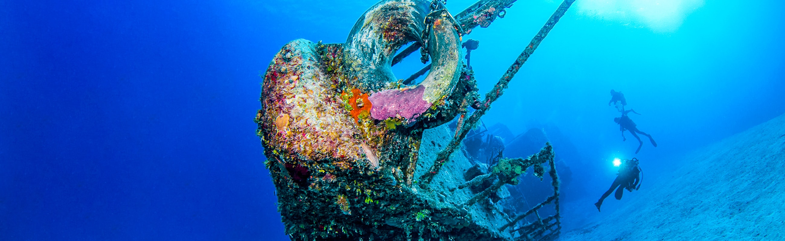 Sunk in 1996, the 330-foot MV Captain Keith Tibbetts wreck dive is popular with all levels of divers