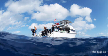 More to Love About Your Next Dive Vacation